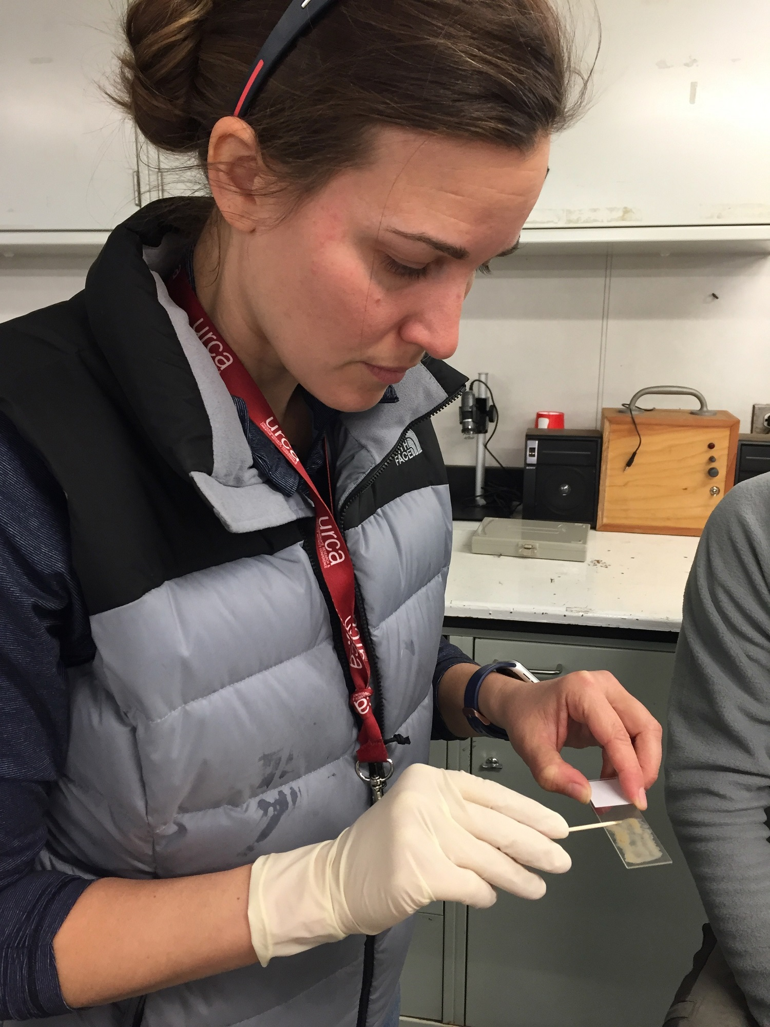 Becky Minzoni demonstrates how to make a smear slide. Smear slides allow scientists to look at diatoms (microalgae that live near the surface of the ocean).