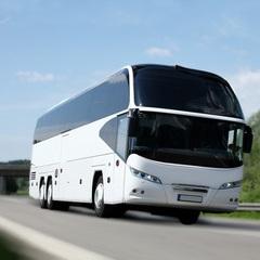 Bus/Transportation