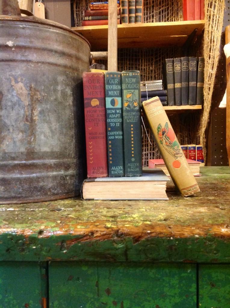 Beautiful antique books