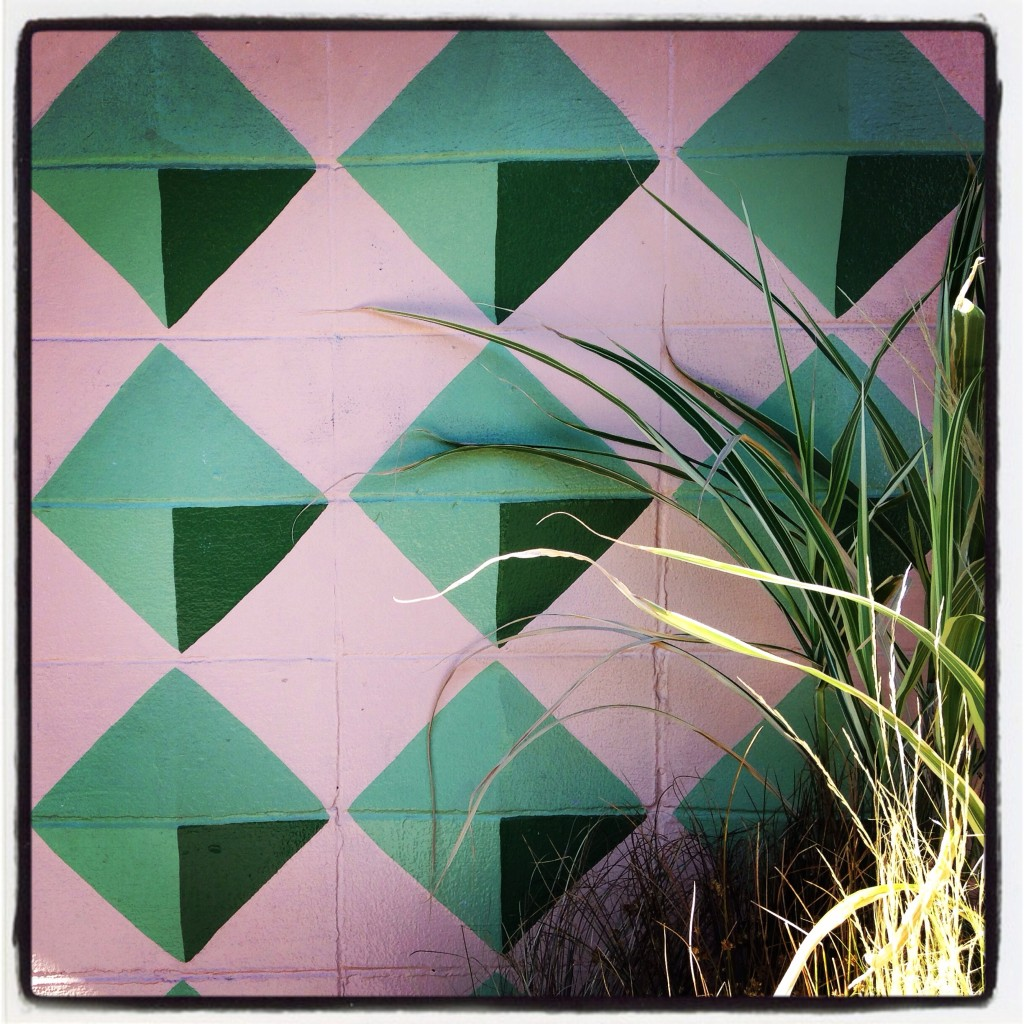 Portland Cement Block Wall