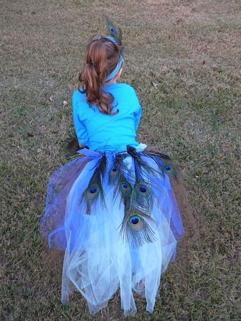 The peacock tail was made with ribbon, tulle, and I used blue felt on which to glue the peacock feathers.