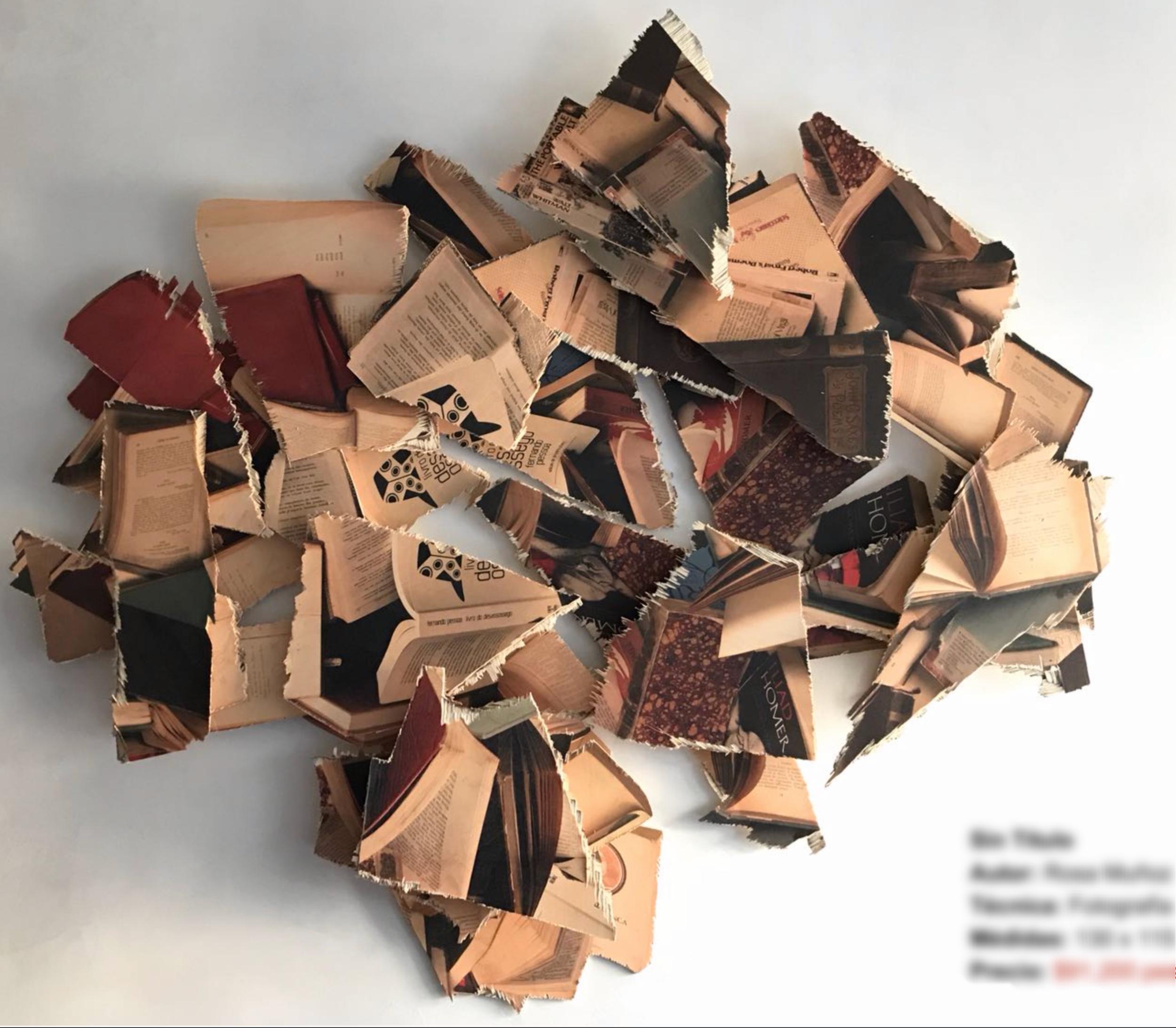 Sin Título Autor:  Rosa Muñoz  Técnica:  Fotografía sobre madera   Medidas:  130 x 115 cm