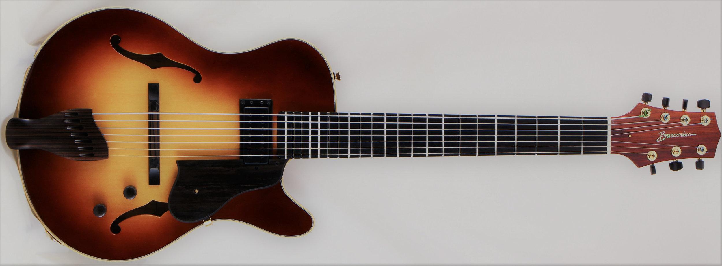 Mark White_Buscarino Guitar_Front