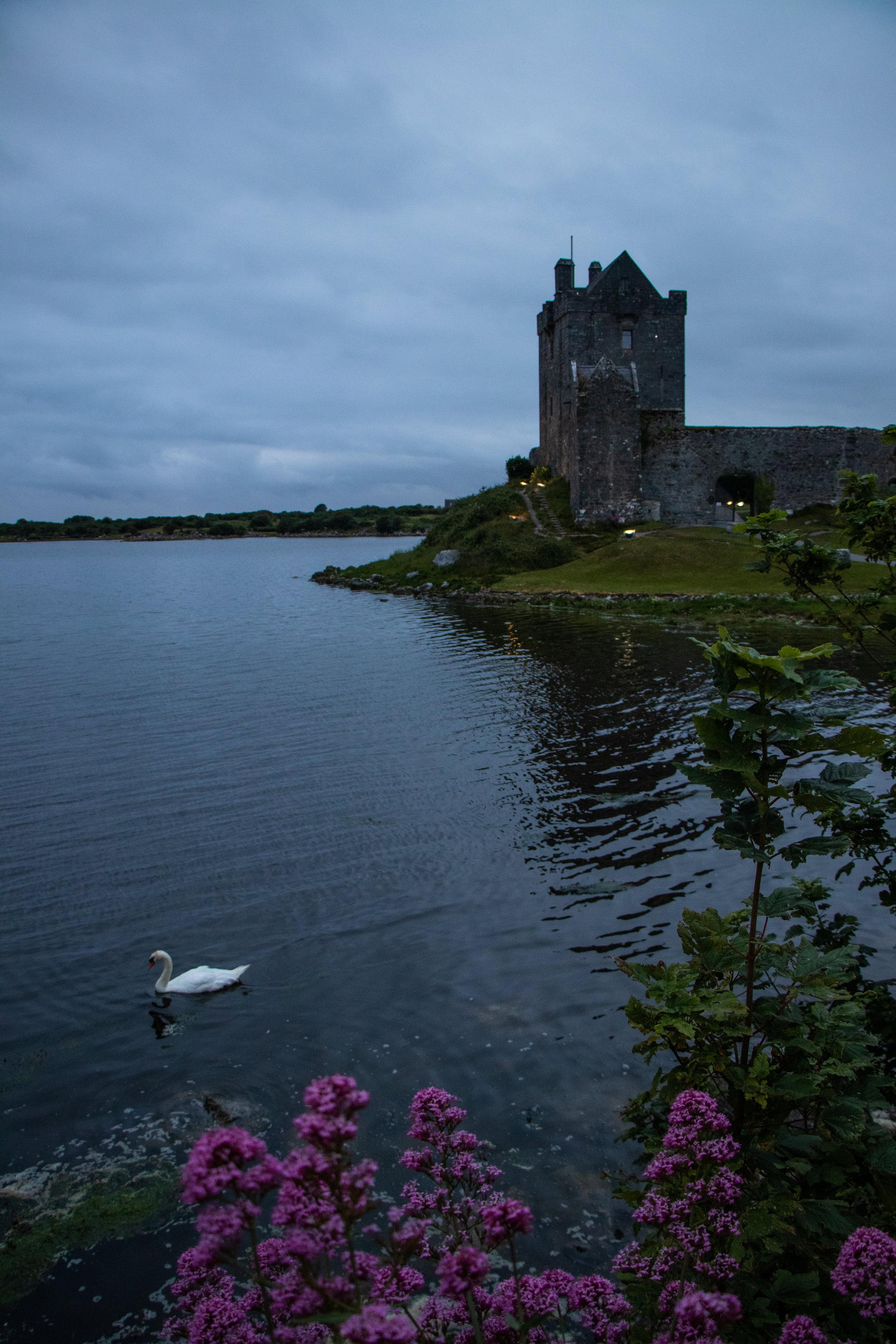 Ireland2019-9854.jpg