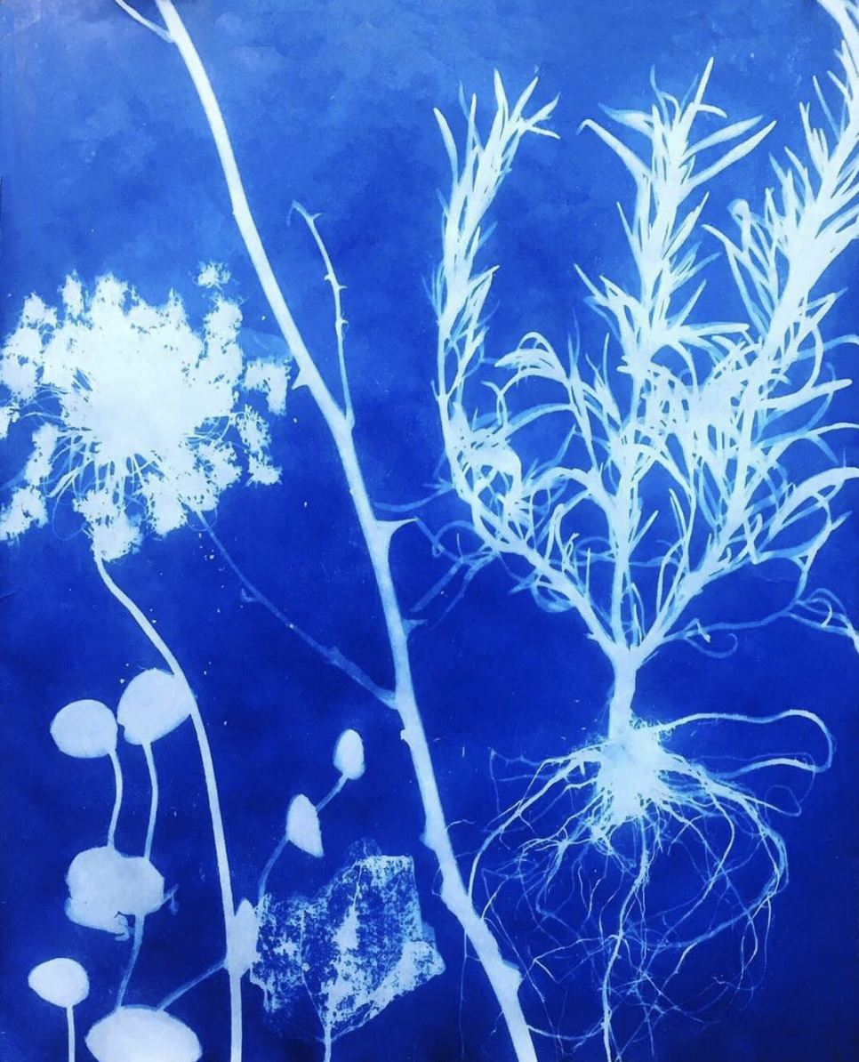 The Green Room Exhibition  - SHAMSY Cocoon Installation  May 25, 2019 - July 31, 2019  Opening Reception / Thursday, April 4, 2019   View Pieces    More information