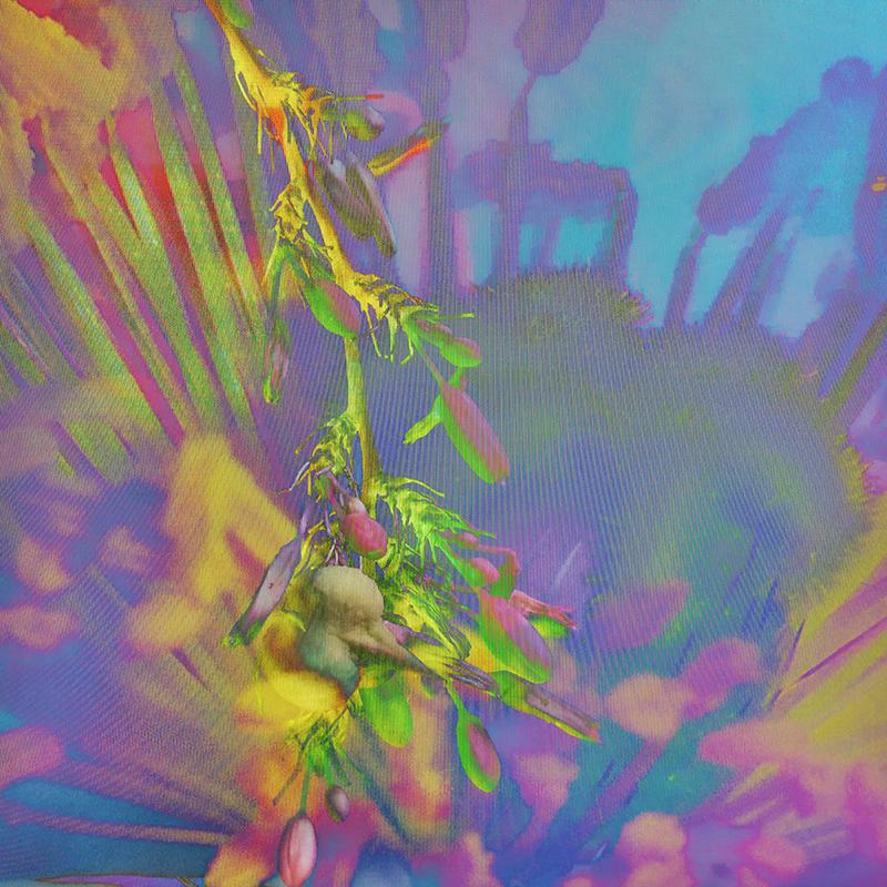 Stigma Spectrum by Shamsy Roomiani.JPEG