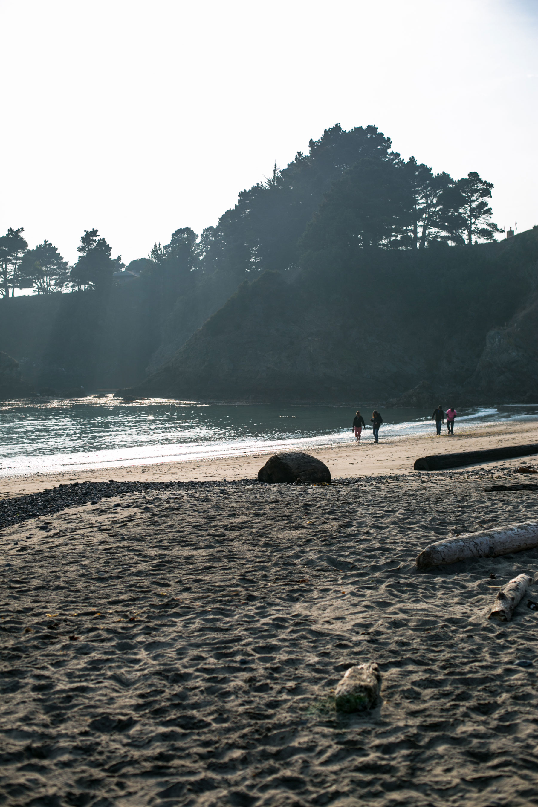 the beach at Van Damme State Park