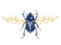 logo.1jpg.jpg