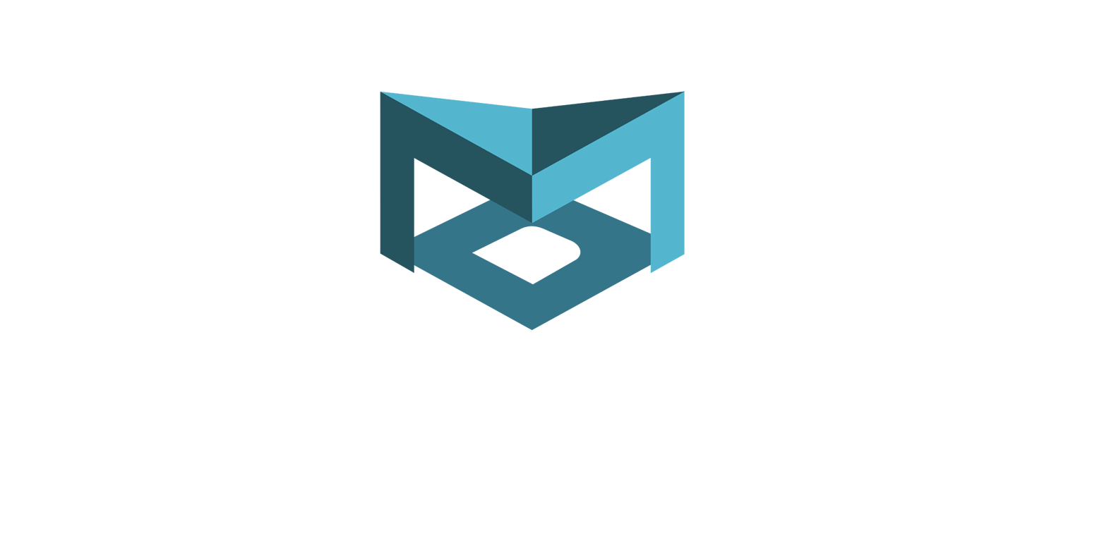 Messori_logo_footer.png