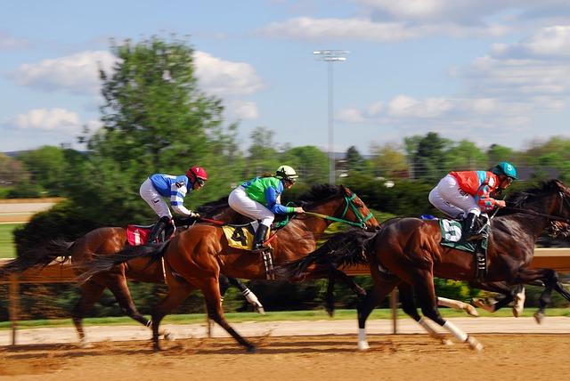 horse-racing-2107381_640.jpg