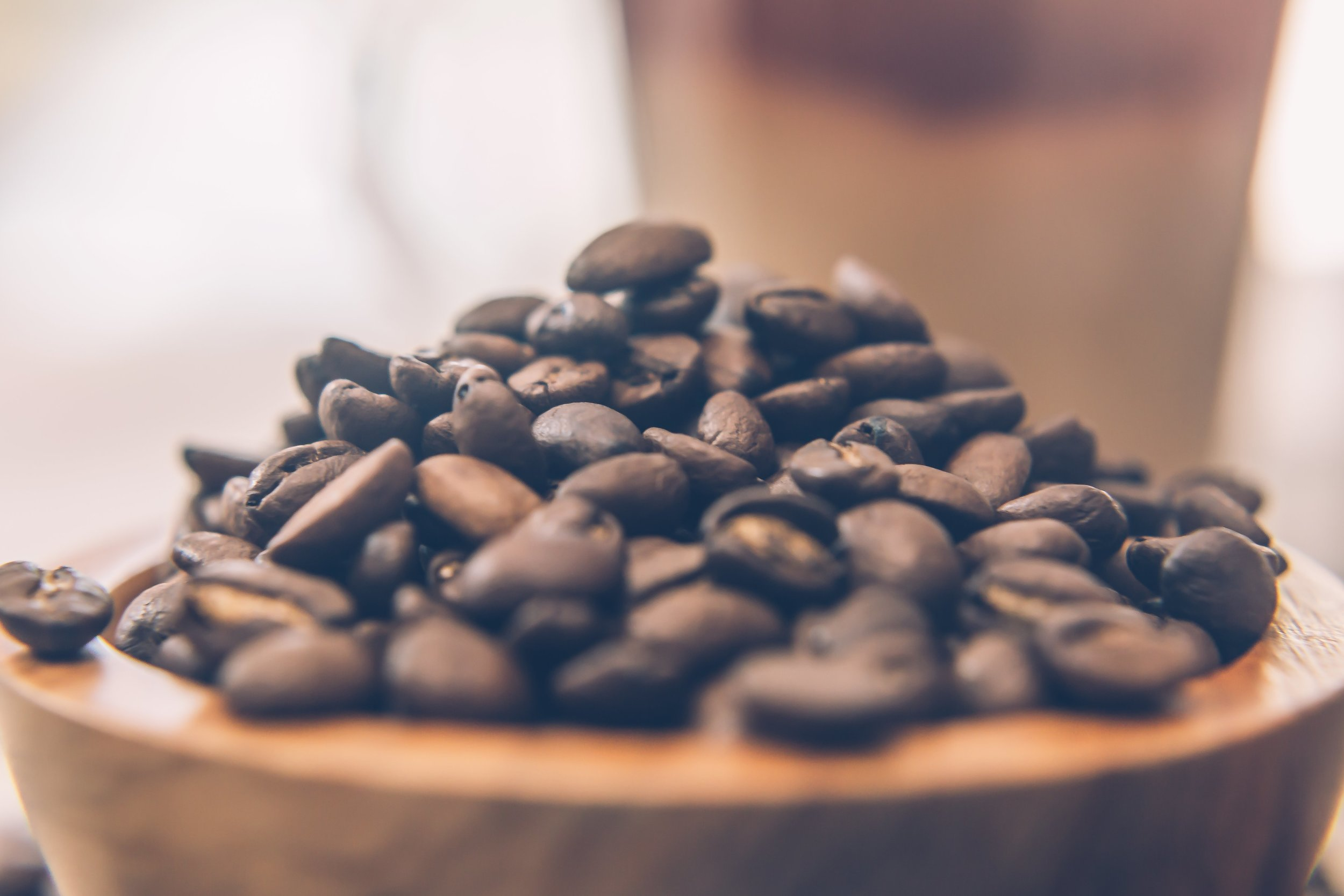 Closeup_of_Coffee_Beans.jpg