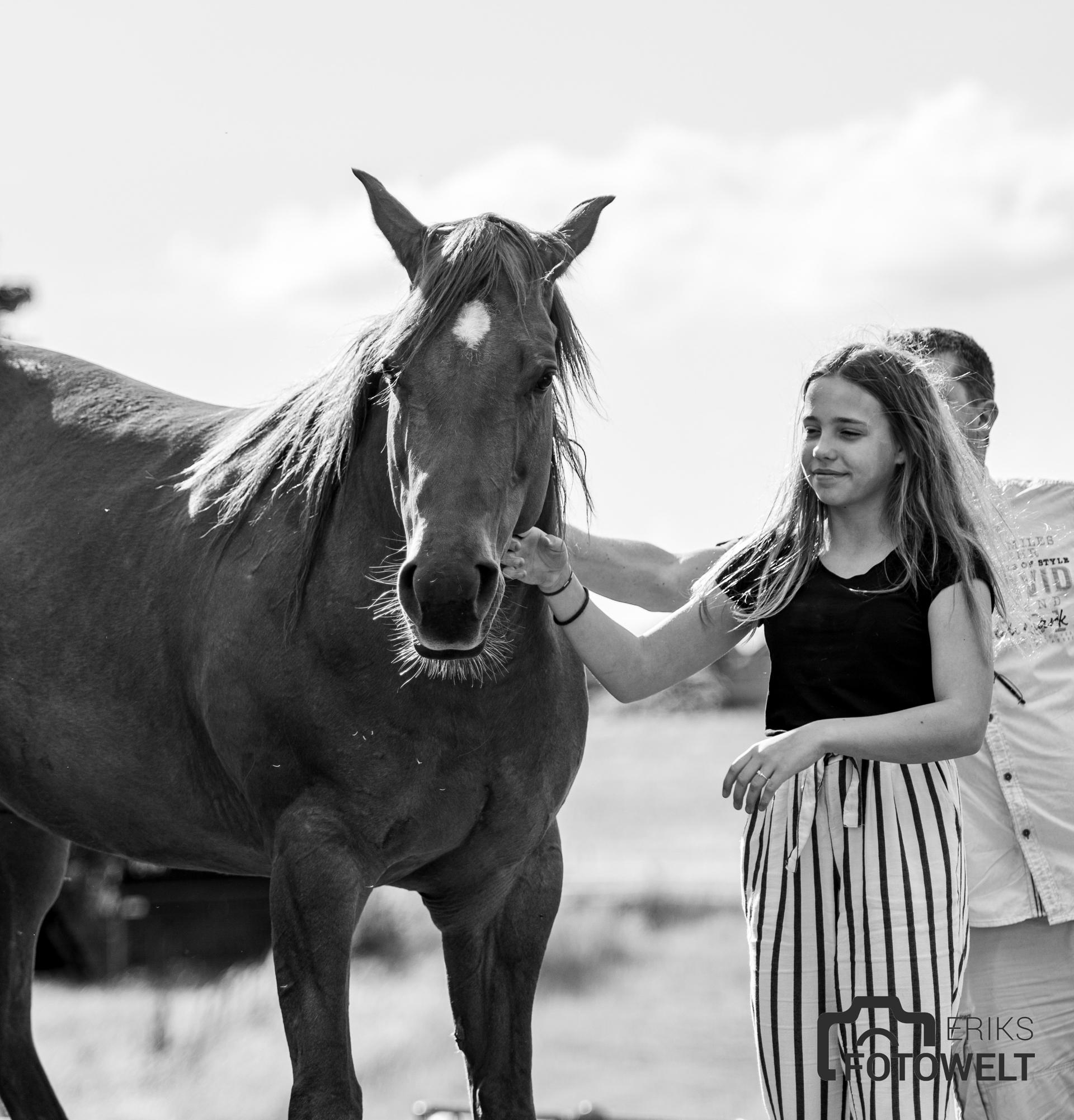 www.horseride.de