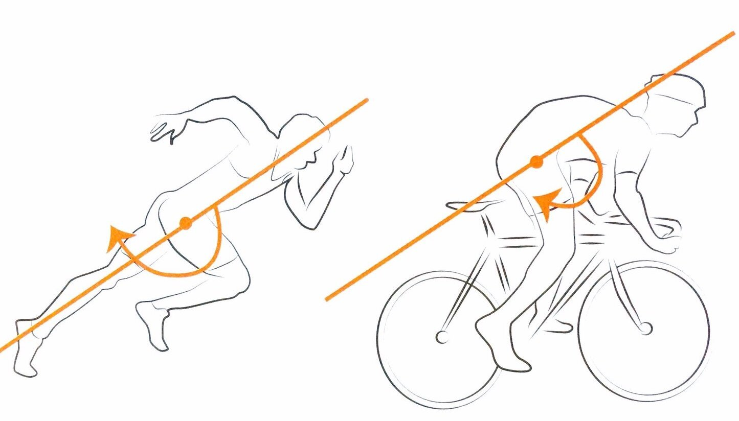 CyclingStrengthDiagram-1.jpeg