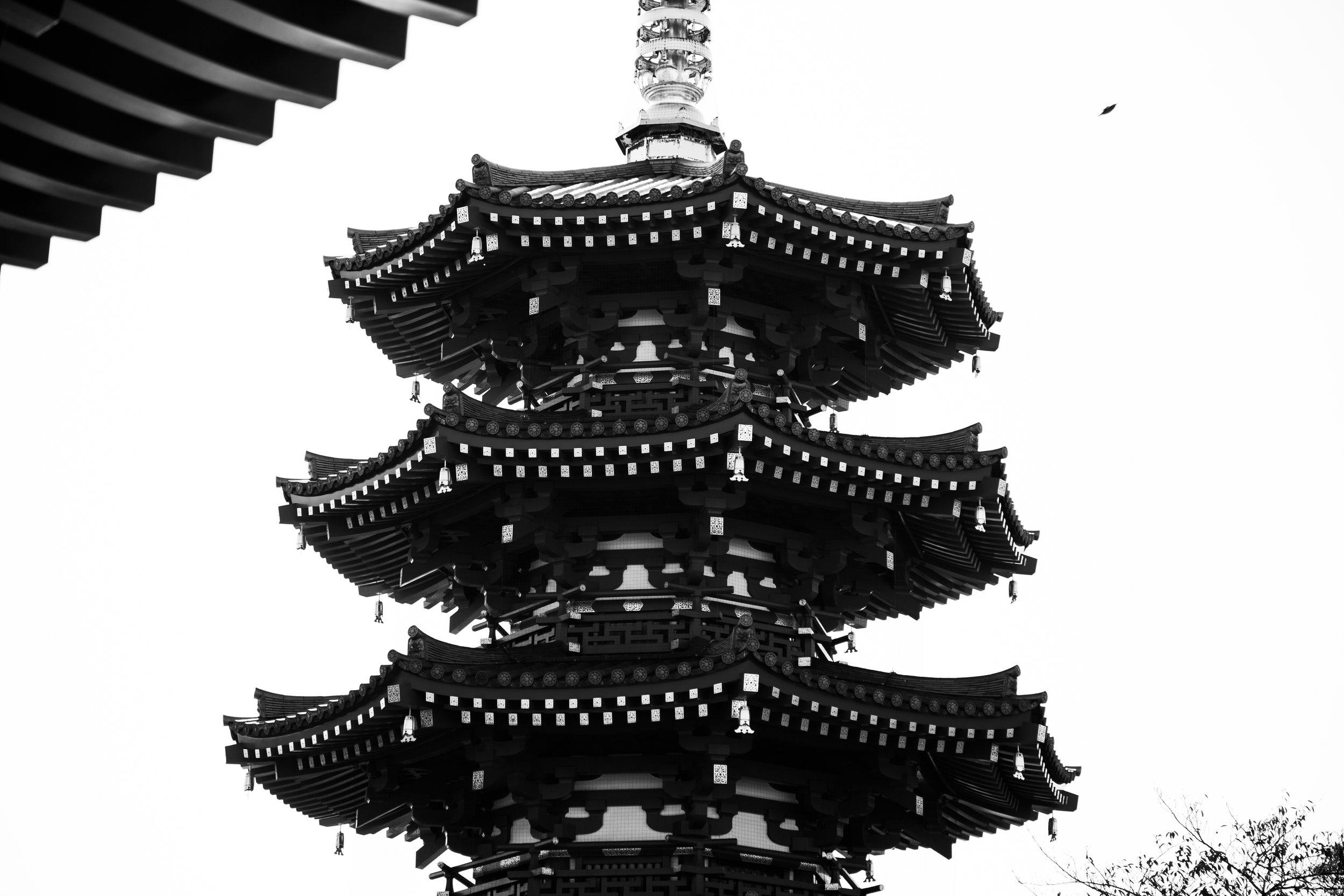 kawasaki sake-82.jpg