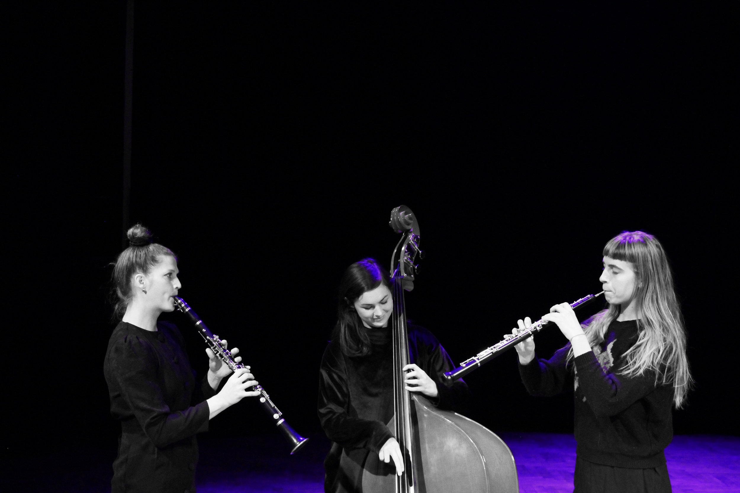 PAHASKA  TRIO/CONTEMPORARY FOLK/JAZZ/CHAMBER MUSIC