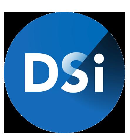 logo DSI.png