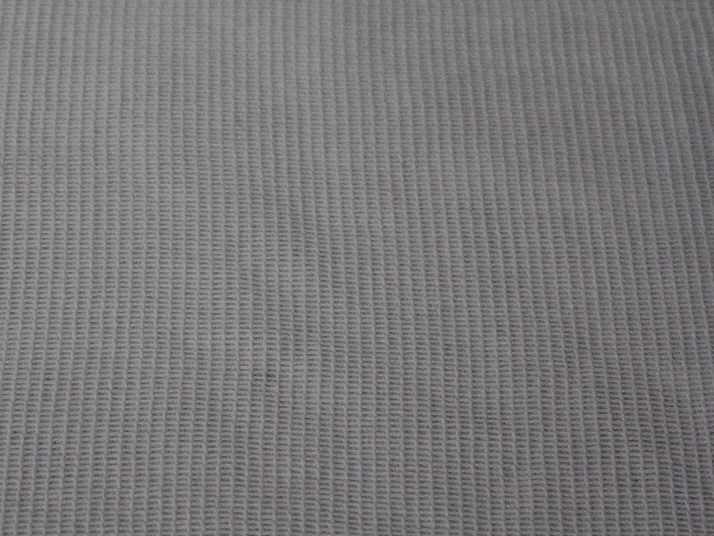 white+sharkstooth.jpg