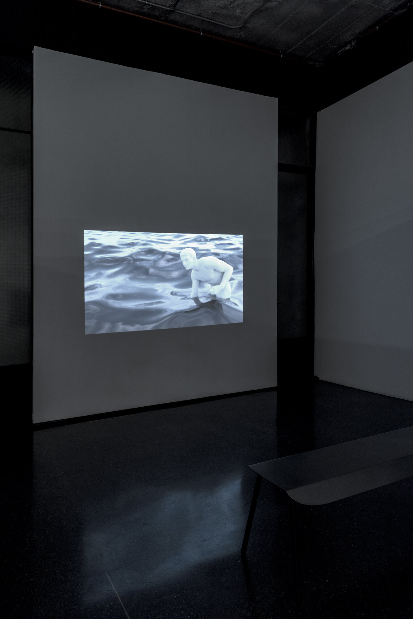 Hunter and His Dog - Spirit   Joshua Pearse  2018  Video installation