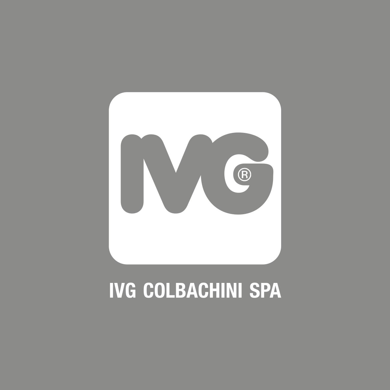 IVG_logo.png