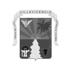 cleinte-gris__0000_villavicencio.jpg