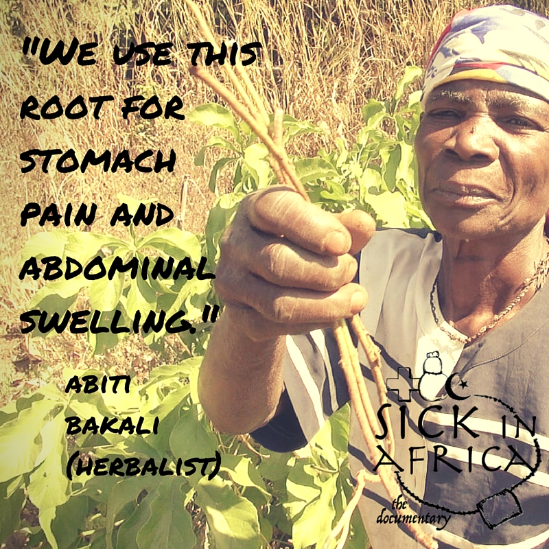 We use this root.jpg