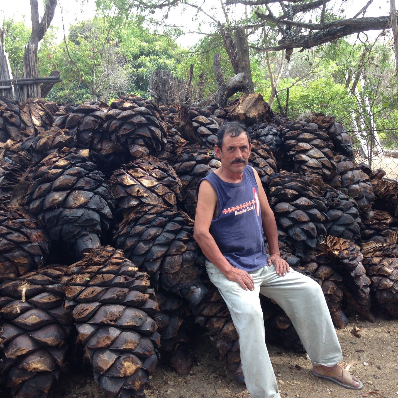 Mezcalero Ranulfo Sitting on Massive Cooked Espadin