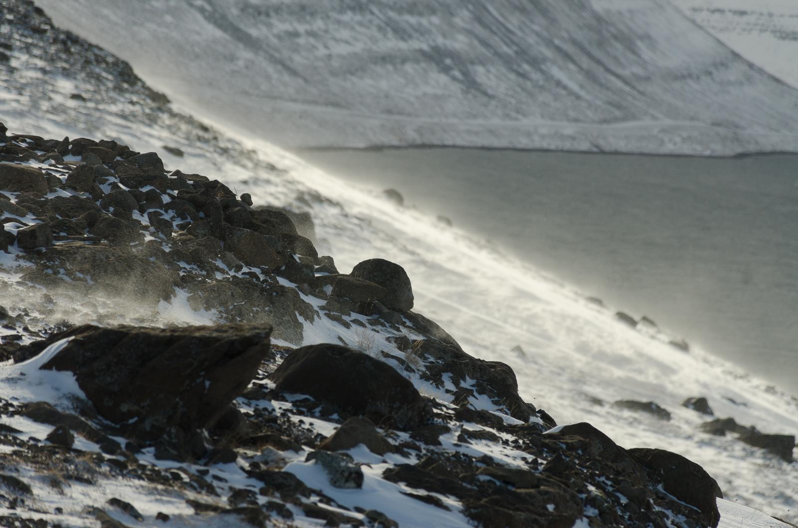Snowdrift on Westfjords - © Mike Best