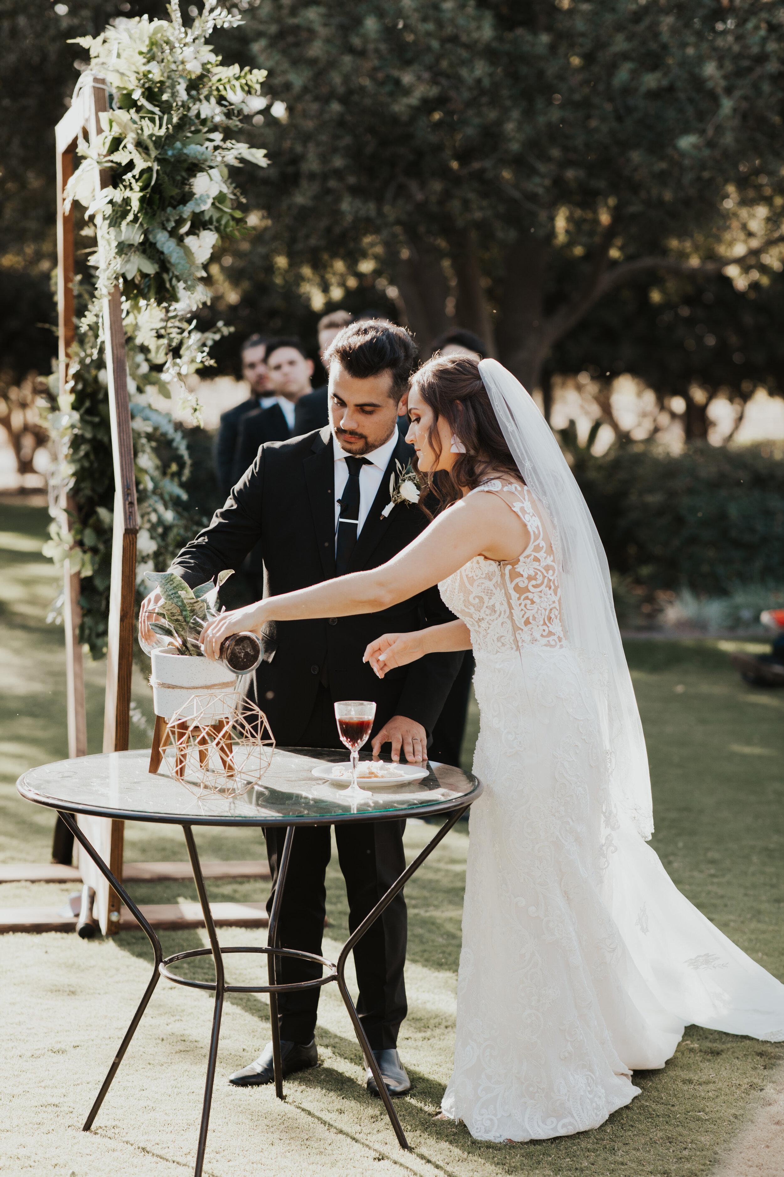 Emilee-Michael-Wedding-Tuscan-Gardens-Kingsburg-Central-Valley-California-SNEAK-PEEK-40.jpg