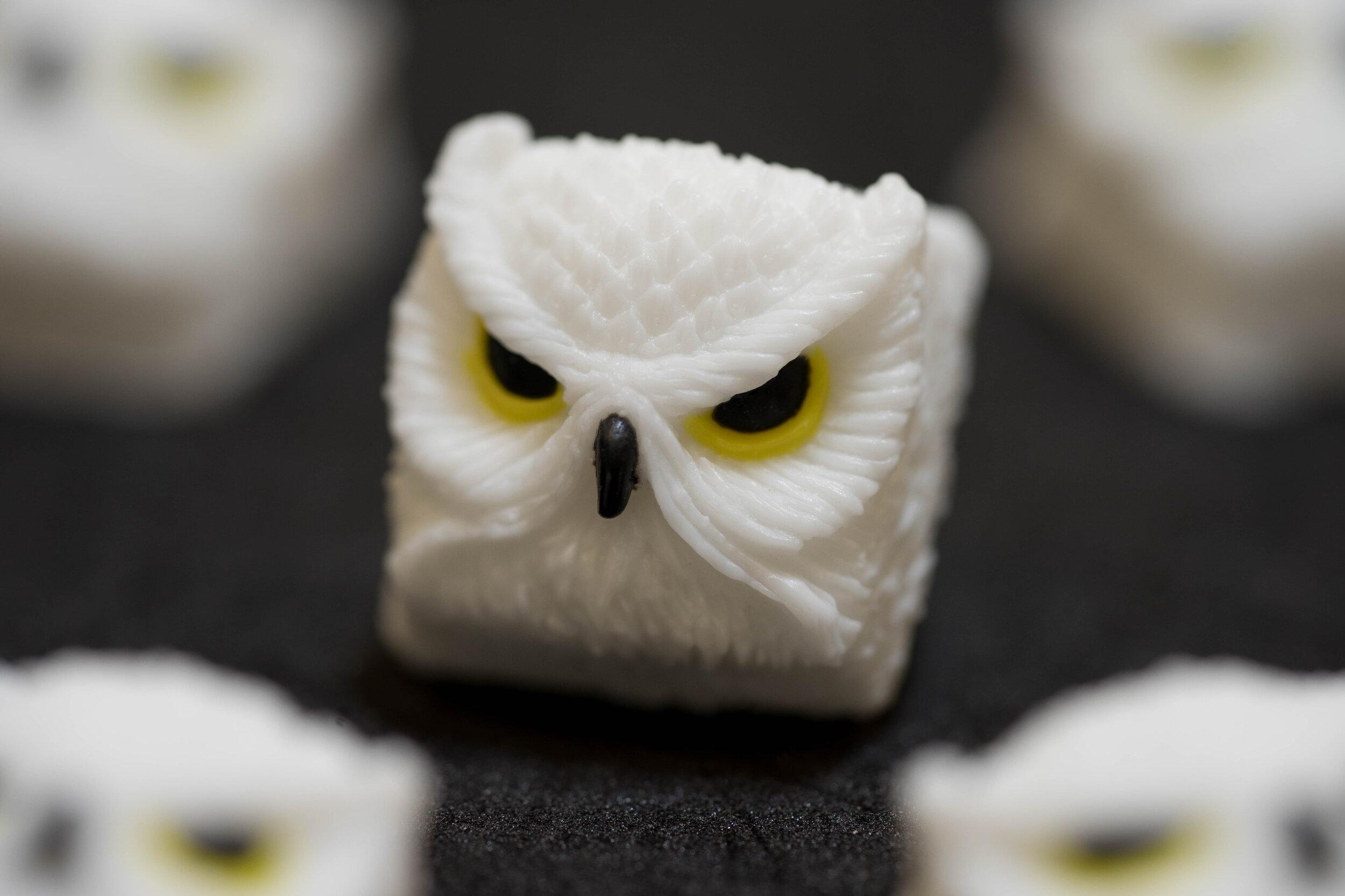 Alpha Keycaps - keypora - Hedwig