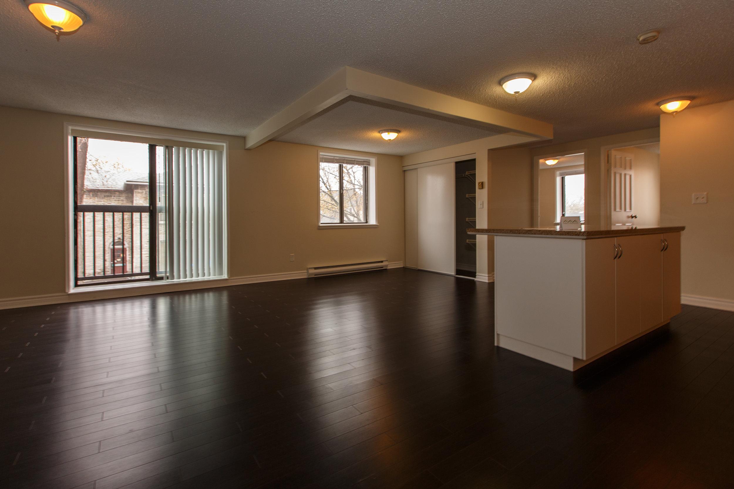 311 Queen St. _u007c_ Front Hallway, looking towards open concept living room and kitchen.jpg