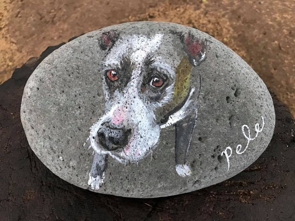 Day 71 Painted Rock. #pele
