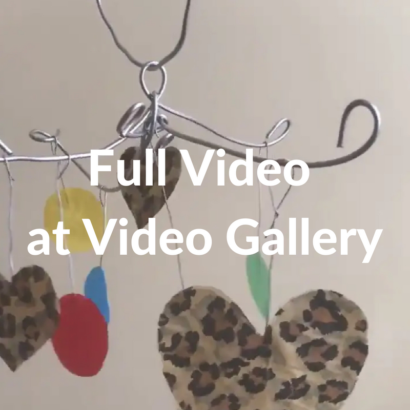 Day 9 Full Video at Video Gallery
