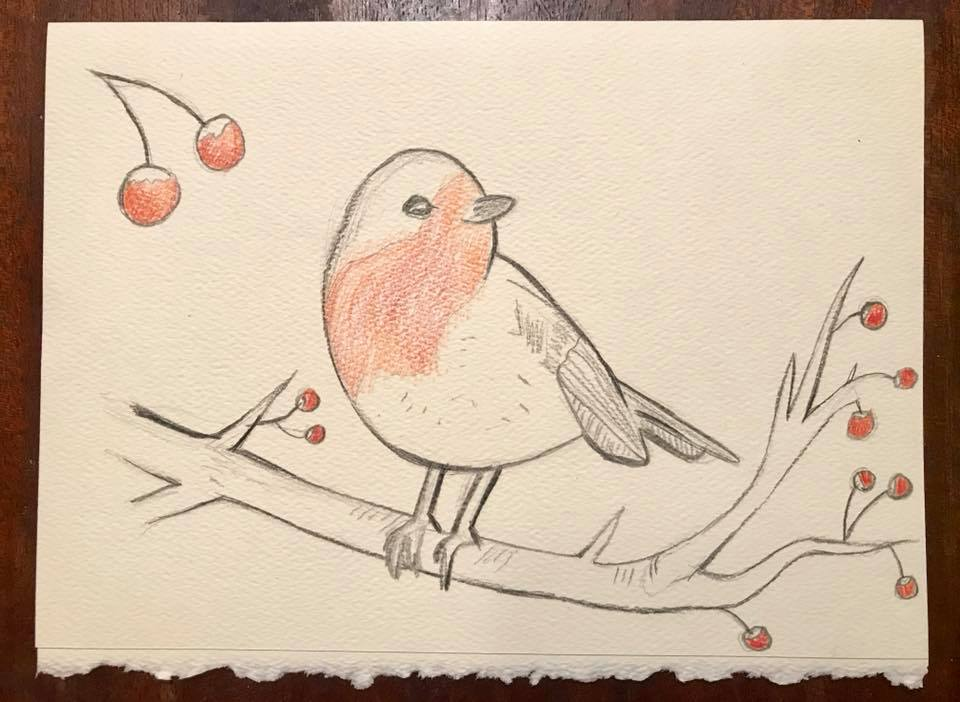 Day 274. Bird Drawing