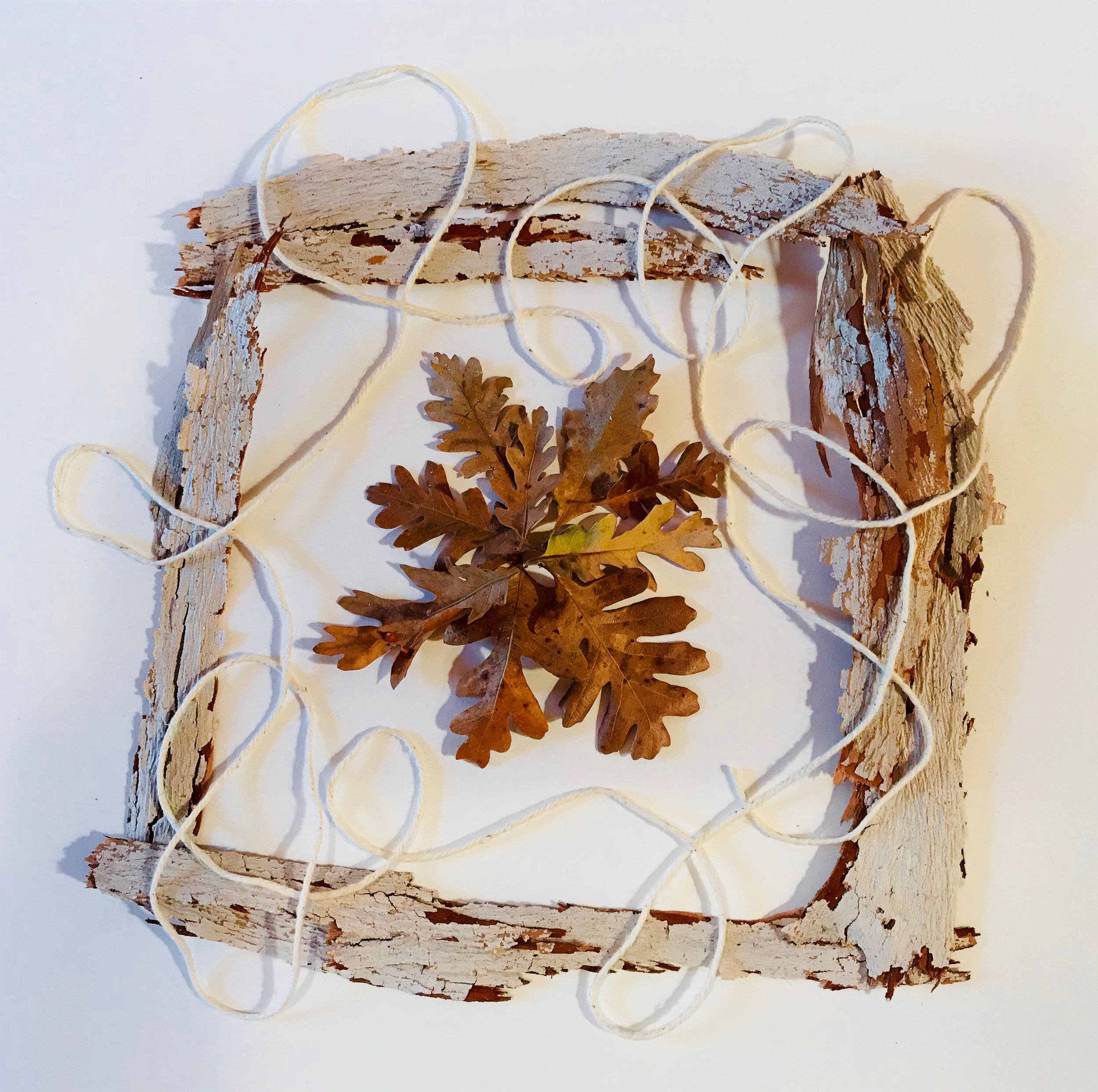 Day 289.  Playing with Bark, Leaves and String
