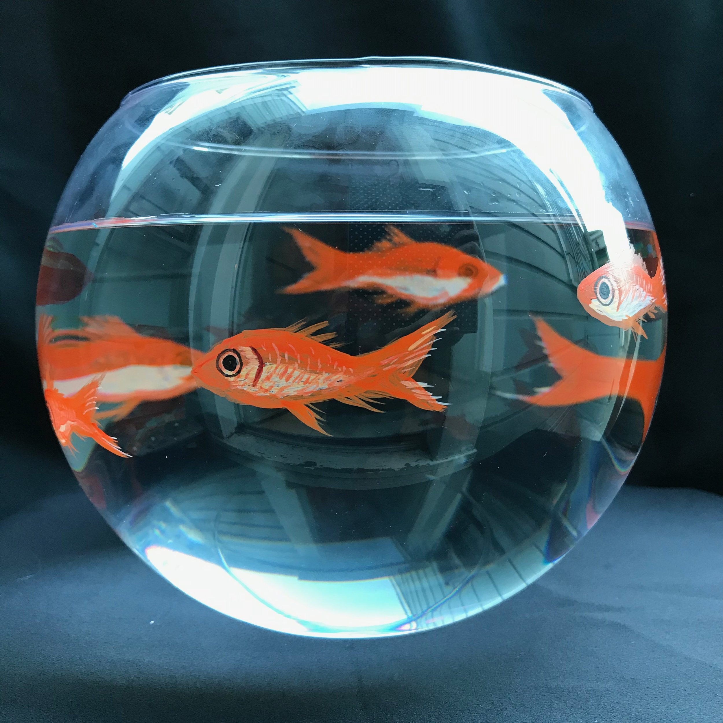 Day 360. Painted Fishbowl