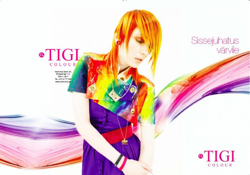 tigibrochureestonia_backcover.jpg