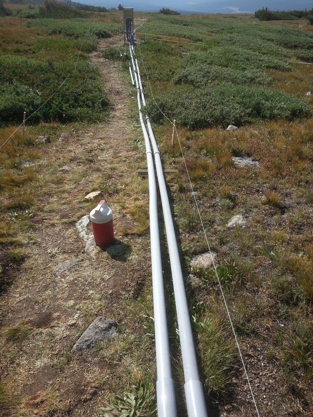 Niwot Ridge CU Project