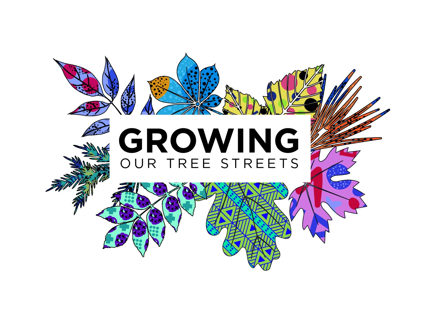 """Downtown Lewiston is a """"Choice Neighborhood"""" - Because of this great opportunity, Healthy Neighborhoods' is focused on supporting community participation and governing the development of a Tree Street Neighborhood Transformation Plan."""
