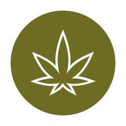 Cannabis Track Icon.jpg