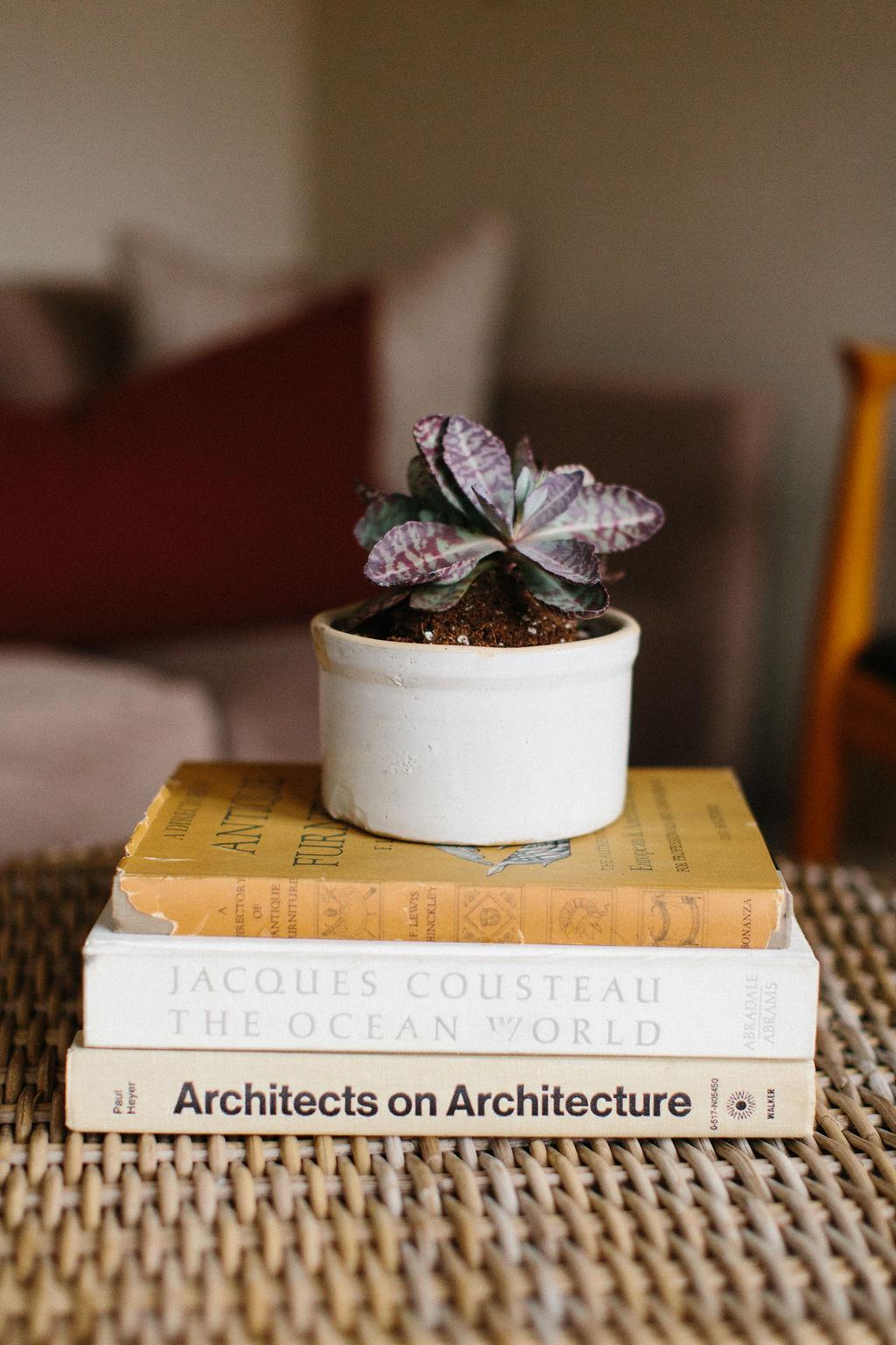 Journey-Jacobs-Design-Studio-Louisville-Residential-Commercial-Hospitality-Interior-Design-Traditional-Modern-9.JPG
