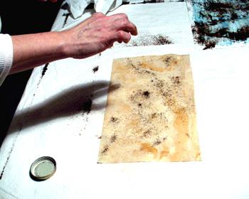 Wet ivory Caba bark paper and sprinkle on walnut ink.
