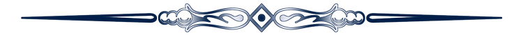 Divider-1-copyx750.png