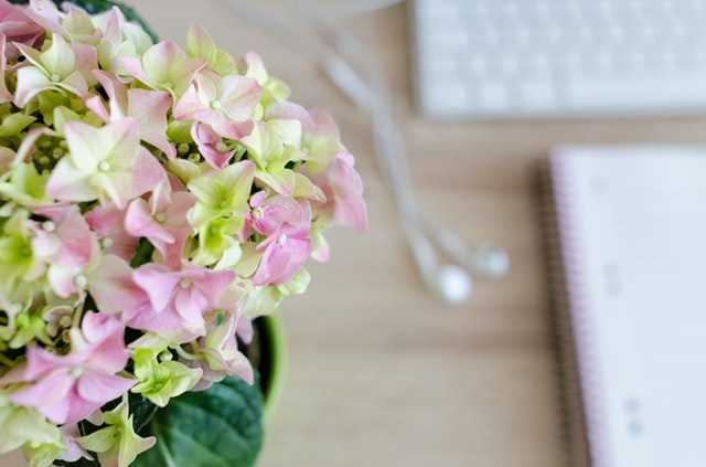 flower headphones and notebook.jpg