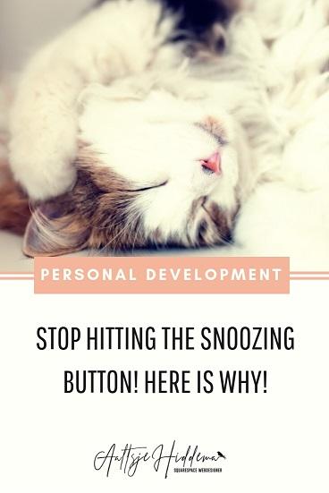 cat sleeping snooze
