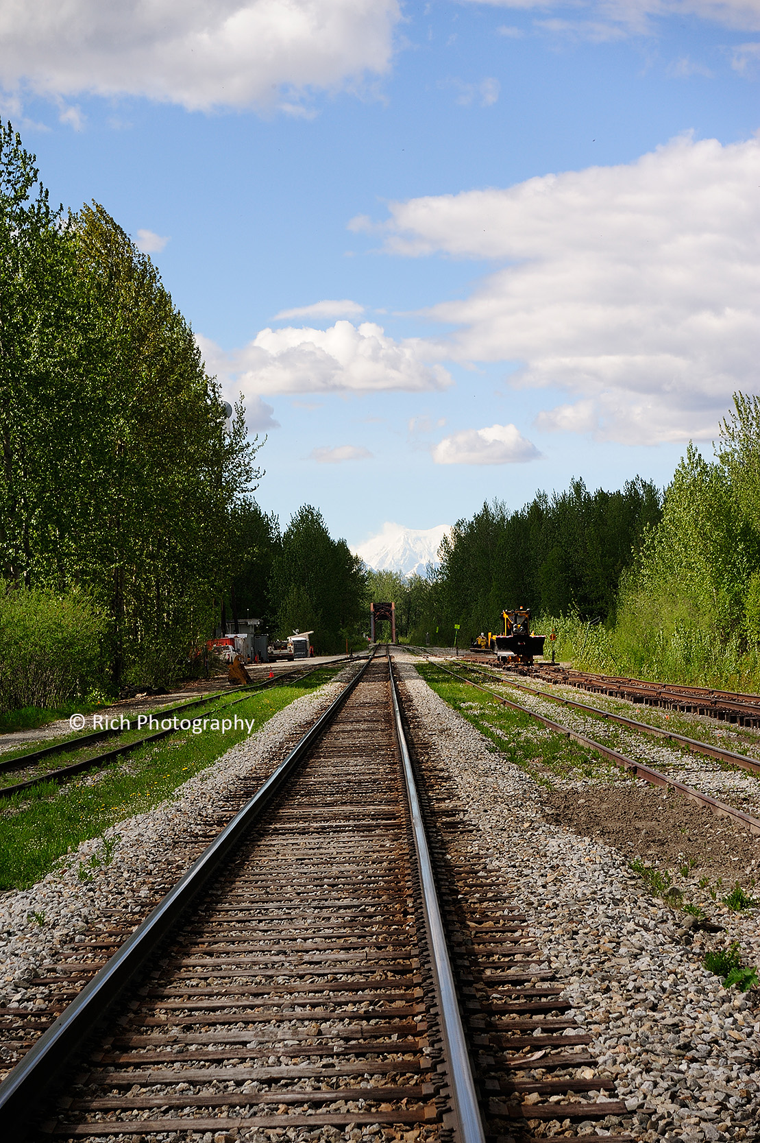 141 Denali on the tracks DSC_8479 copy.jpg