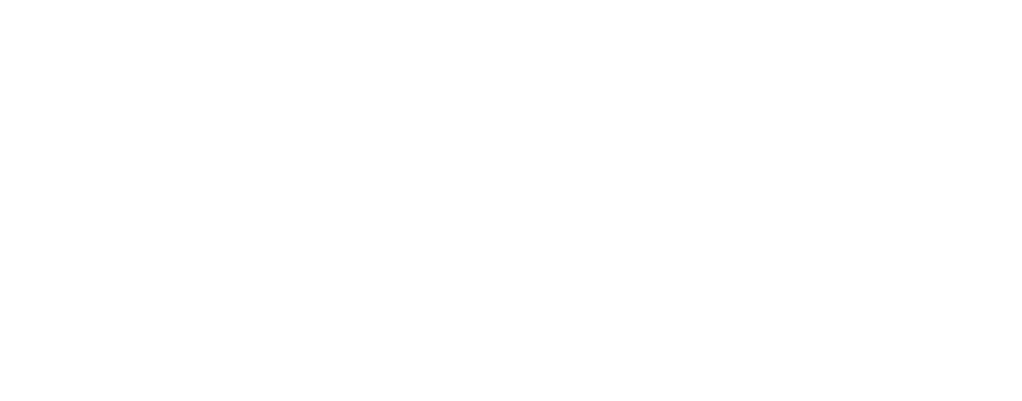 Dawna's Birth Services-logo-white (1).png