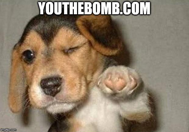 BOMB.COM.jpg