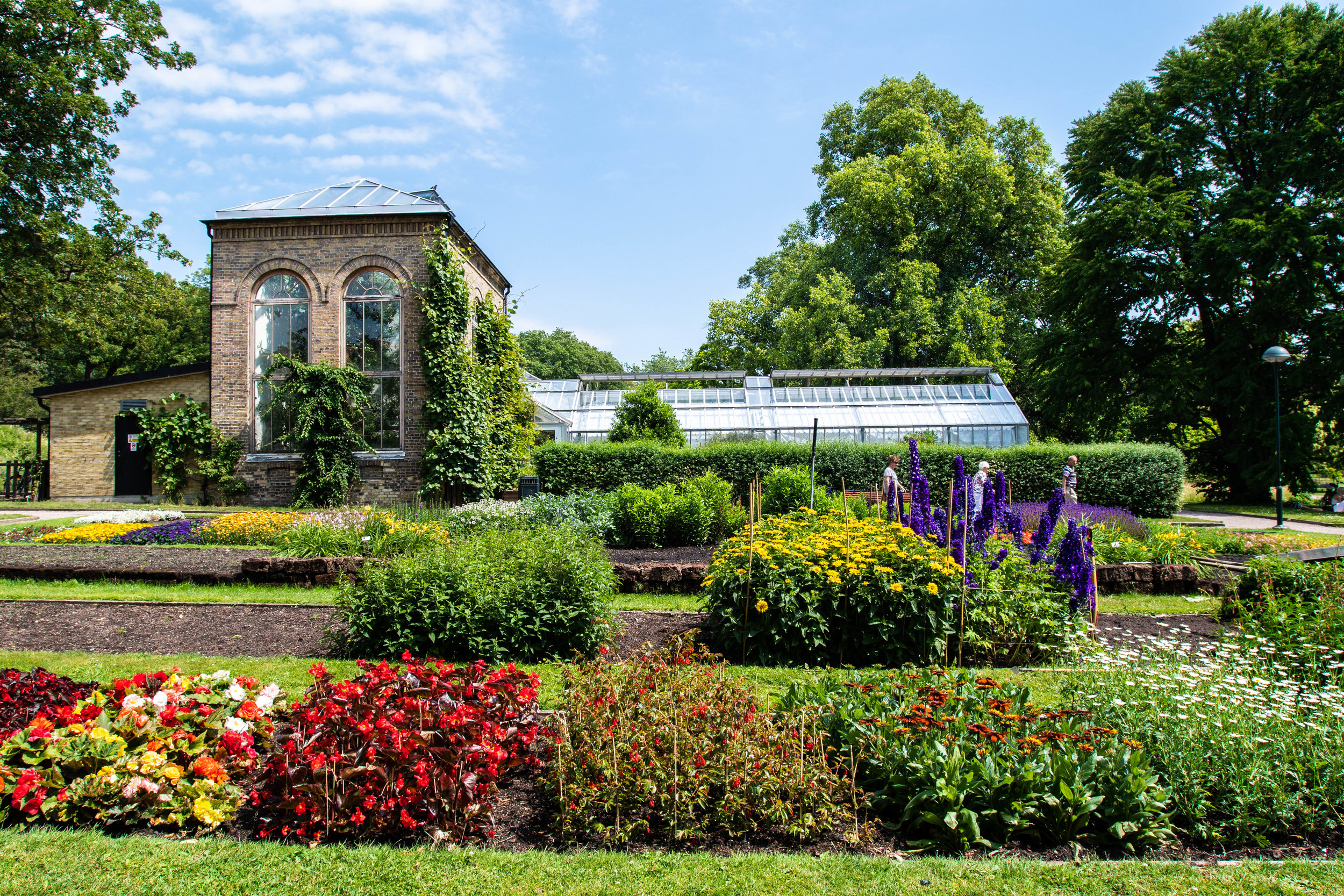 Botanical garden is definitely a must visit while in Lund.