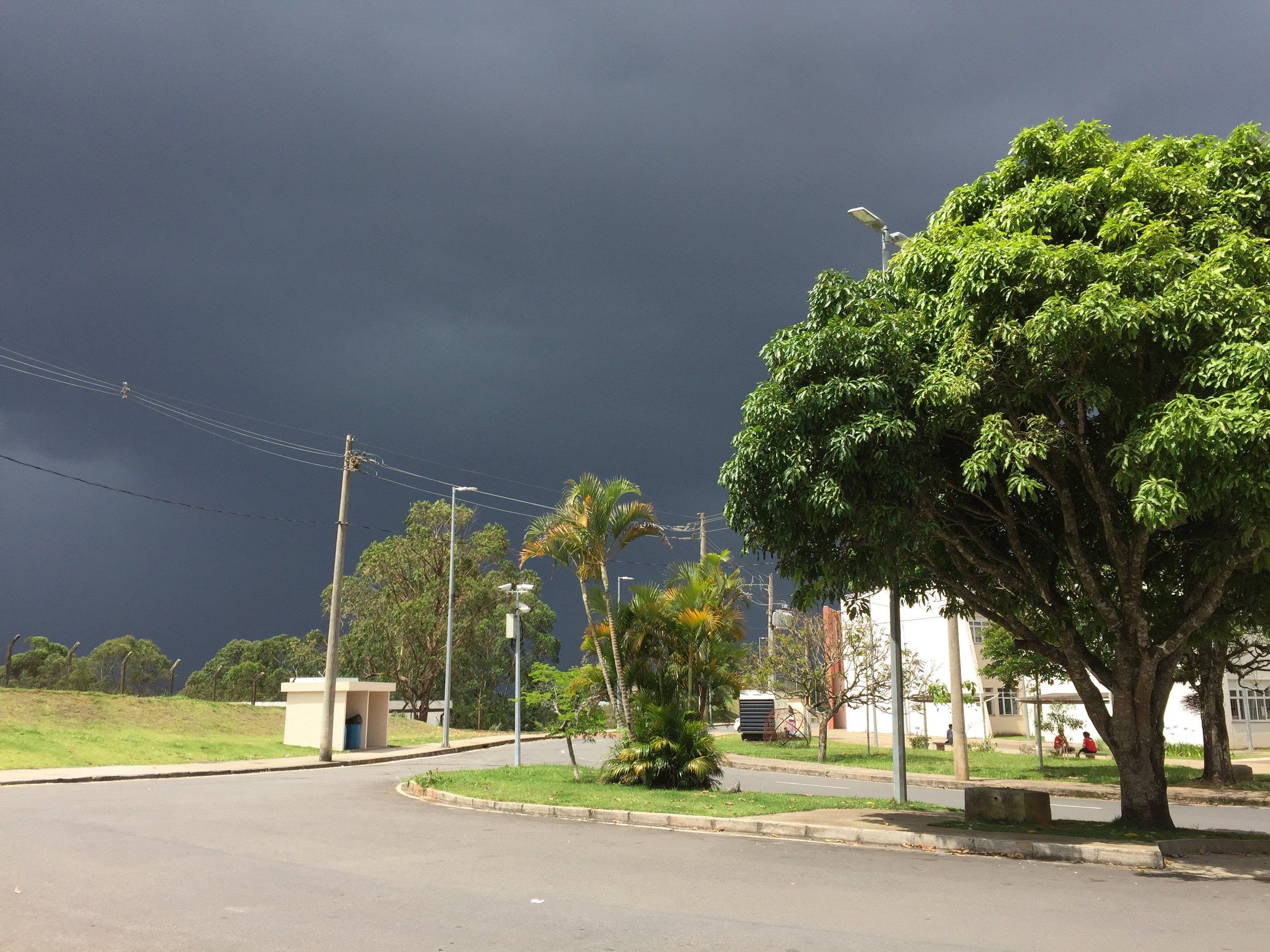 Her har vi dagens eksempel på dette interessante været som vi stadig opplever for tiden. Solskinn på treet og bakken foran oss, med en anelse mørke skyer i bakgrunnen.