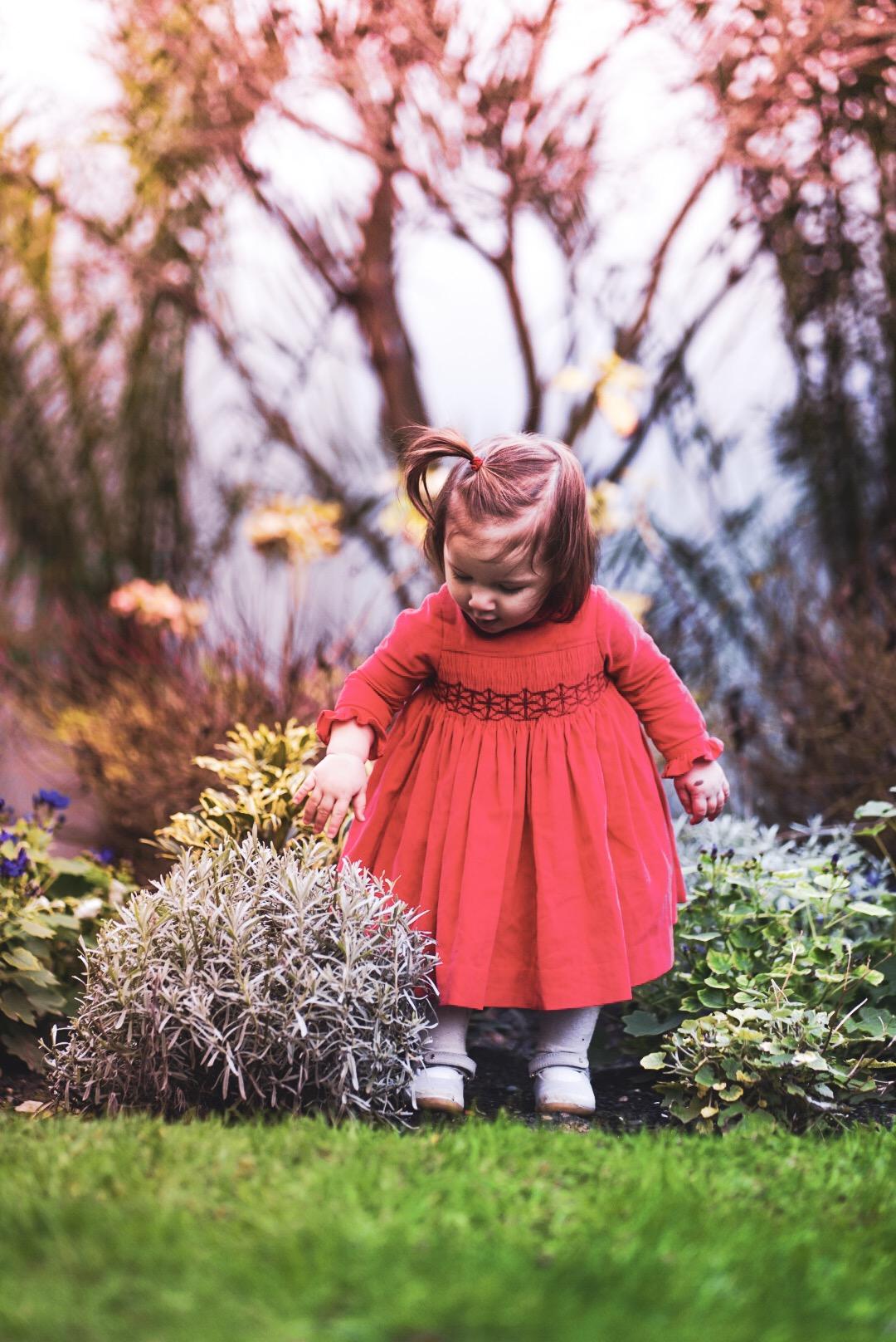 AMELIE ALL MUMSTALK VELVET RED DRESS CERISE LOSANGE 1.jpeg